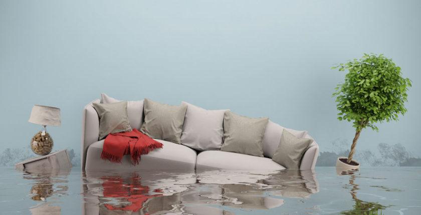 dégât des eaux copropriété